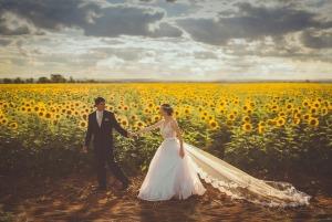 bride-1867318_1920