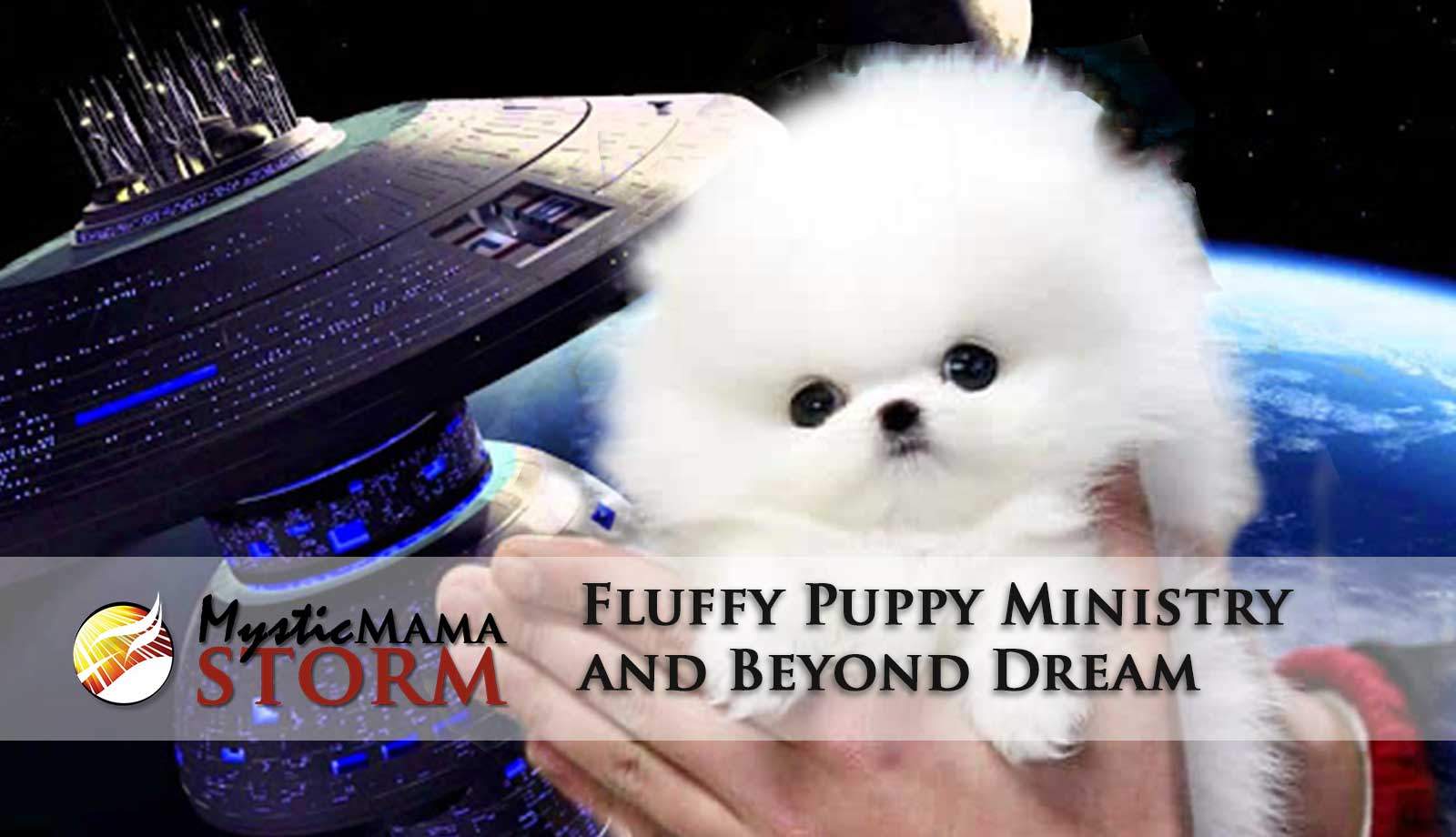 Fluffy Pets and Beyond Dream